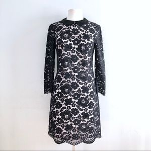 Ted Baker Black & White Lace accented dress 2